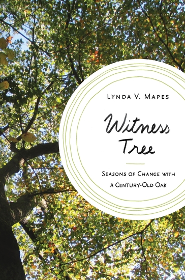 Witness Tree - Seasons of Change with a Century-Old Oak - cover