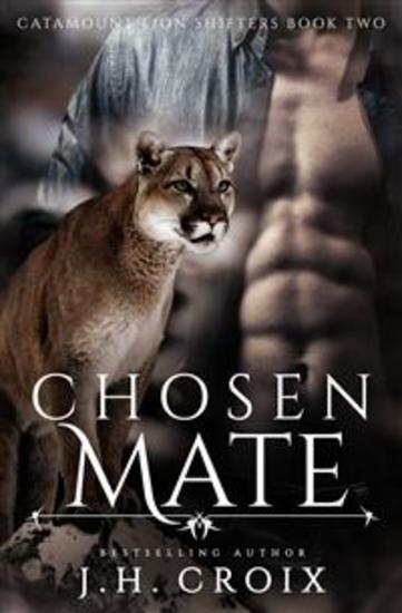 Chosen Mate - cover