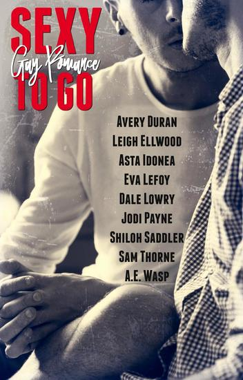 Sexy to Go Gay Romance - Sexy to Go - cover