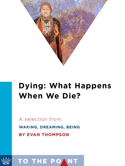 Dying: What Happens When We Die? - A Selection from Waking Dreaming Being: Self and Consciousness in Neuroscience Meditation and Philosophy - cover