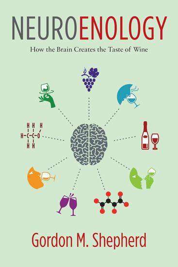 Neuroenology - How the Brain Creates the Taste of Wine - cover