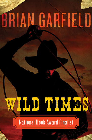 Wild Times - cover