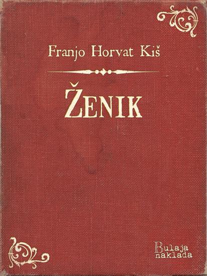 Ženik - cover