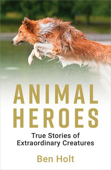 Animal Heroes - True Stories of Extraordinary Creatures - cover