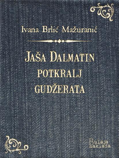 Jaša Dalmatin potkralj Gudžerata - cover