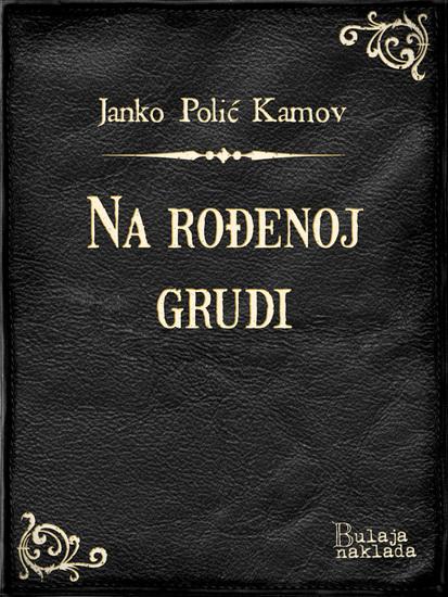 Na rođenoj grudi - Dramatizovana studija - cover