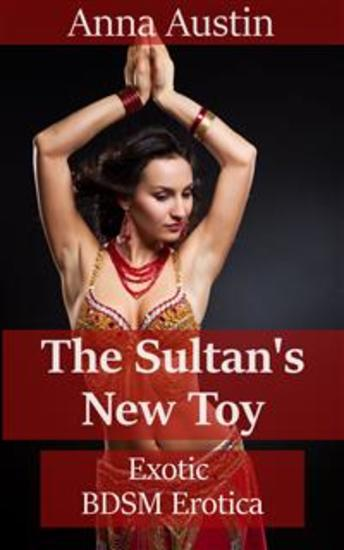 The Sultan's New Toy - cover