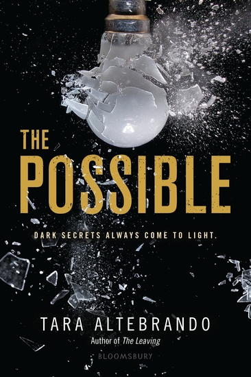 The Possible - cover