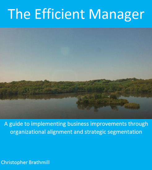 The Efficient Manager - A guide to implementing business improvements through organizational alignment and strategic segmentation - cover