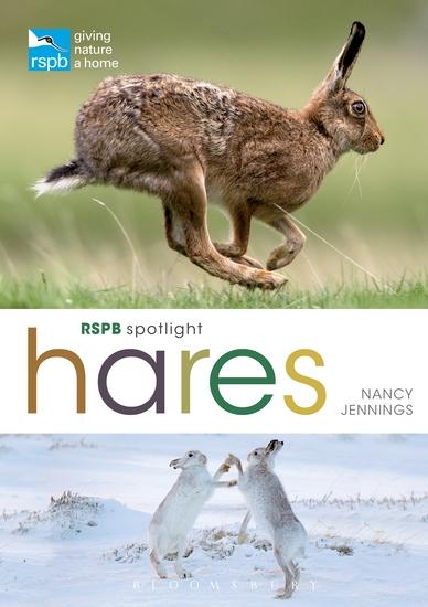 RSPB Spotlight Hares - cover
