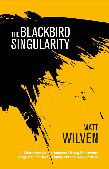 The Blackbird Singularity - cover