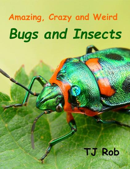 Amazing Crazy and Weird Bugs and Insects - Fascinating Crazy and Weird Animal Facts - cover