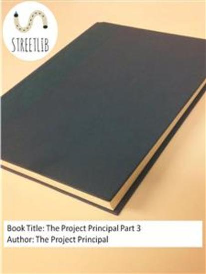 The Project Principal Part 3 - cover
