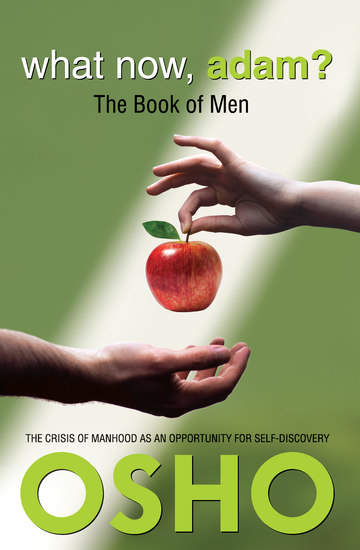 What Now Adam? - The Book of Men - cover