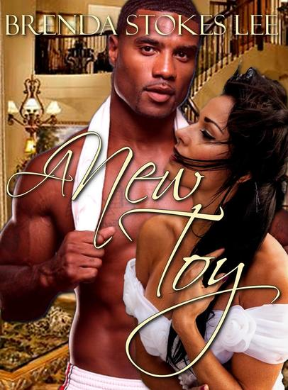 A New Toy An Erotic Novella - cover