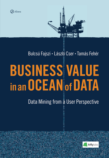 Business Value in an Ocean of Data - Data Mining from a User Perspective - cover
