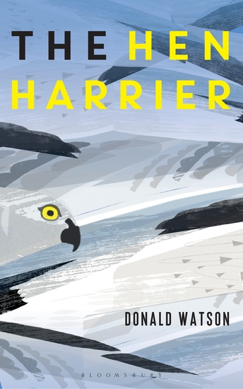 The Hen Harrier - cover