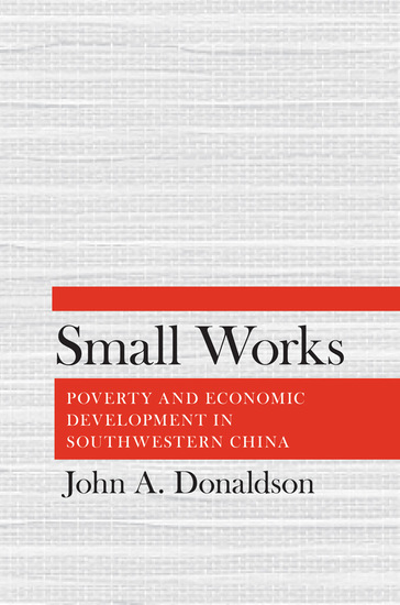 Small Works - Poverty and Economic Development in Southwestern China - cover