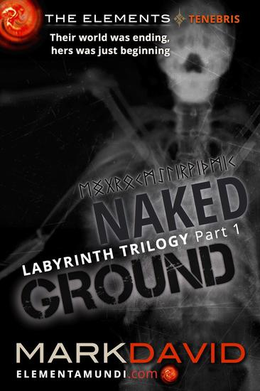 Labyrinth 1: Naked Ground - The Elements #1 - cover