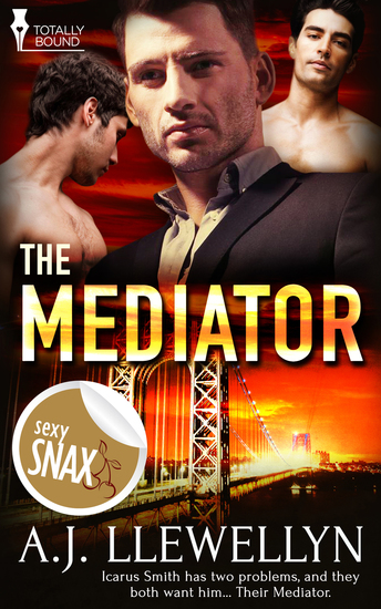 The Mediator - cover