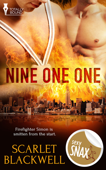 Nine One One - cover