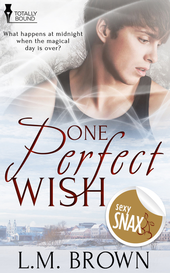 One Perfect Wish - cover