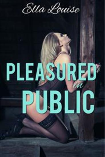 Pleasured In Public - Book 2 of 'Permission Denied' - cover