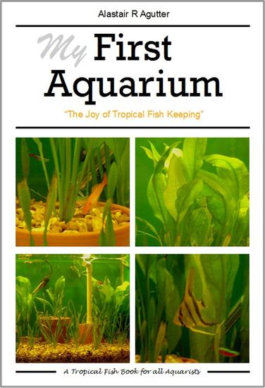 My First Aquarium Book - cover