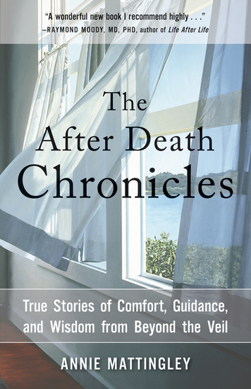 The After Death Chronicles - True Stories of Comfort Guidance and Wisdom from Beyond the Veil - cover