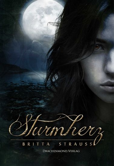 Sturmherz - cover