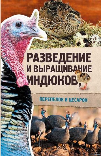 Разведение и выращивание индюков перепелок и цесарок (Razvedenie i vyrashhivanie indjukov perepelok i cesarok) - cover