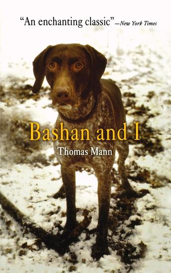 Bashan and I - cover