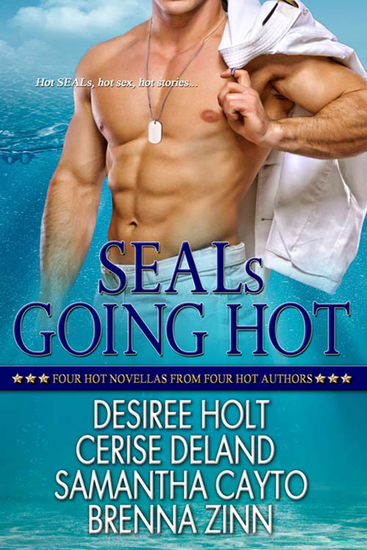 SEALs Going Hot - cover