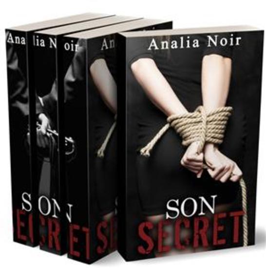 Son Secret: Pouvoir et Perversions (Tomes 1 2 et 3) - cover