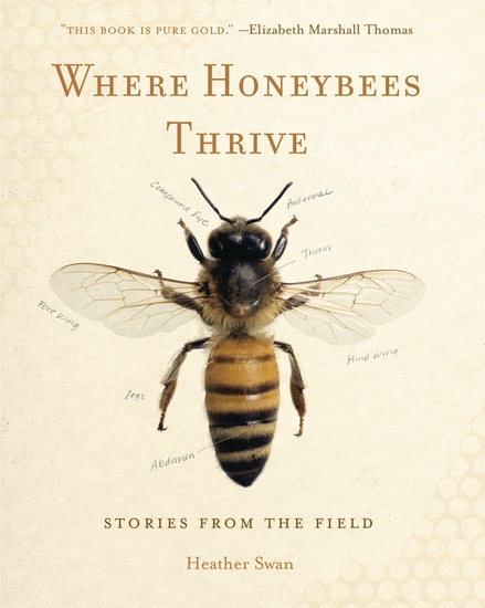 Where Honeybees Thrive - Stories from the Field - cover