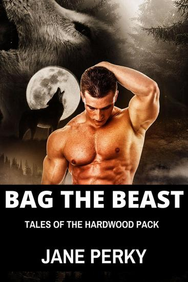Bag the Beast A Gay Romance - Hardwood Pack #1 - cover