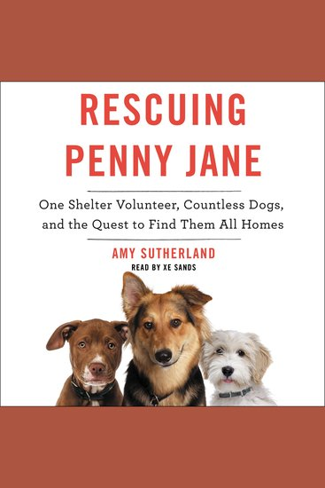 Rescuing Penny Jane - One Shelter Volunteer Countless Dogs and the Quest to Find Them All Homes - cover