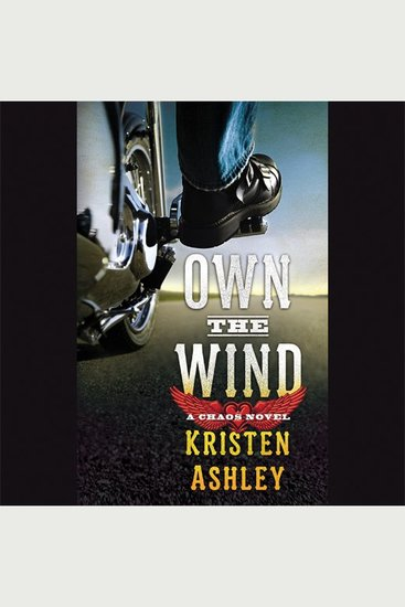 Own the Wind - A Chaos Novel - cover