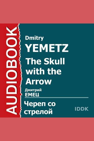 ШНыр Книга 6 Череп со стрелой - cover