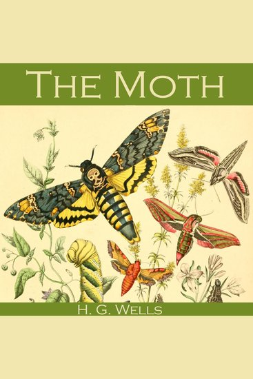 The Moth - cover