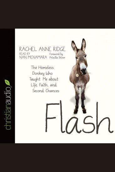 Flash - The Homeless Donkey Who Taught Me About Life Faith and Second Chances - cover