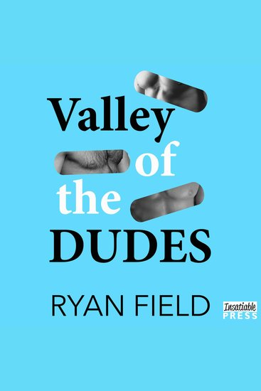 Valley of the Dudes - cover