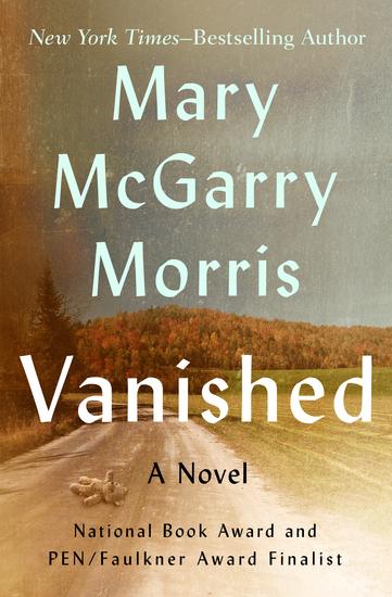 Vanished - A Novel - cover