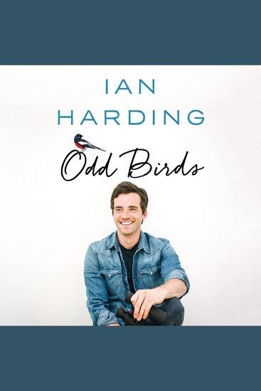 Odd Birds - cover