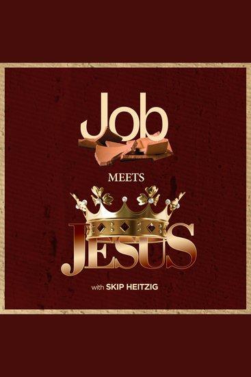 Job Meets Jesus - cover