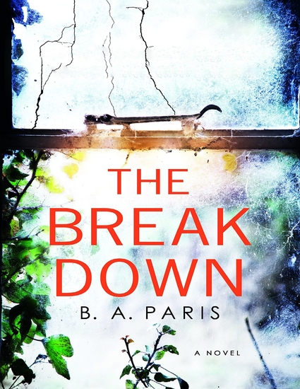 The Breakdown: A Novel - cover