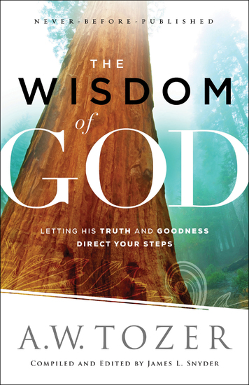 The Wisdom of God - Letting His Truth and Goodness Direct Your Steps - cover