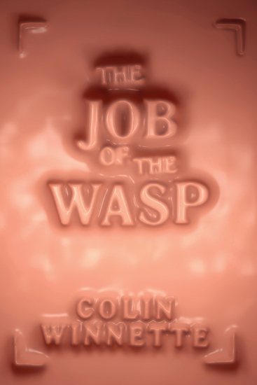 The Job of the Wasp - A Novel - cover