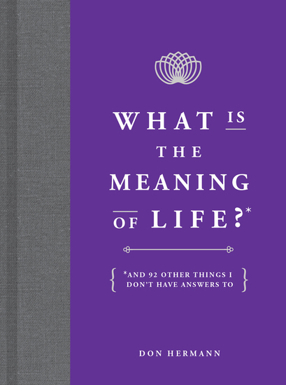 What Is the Meaning of Life? - And 92 Other Things I Don't Have Answers To - cover