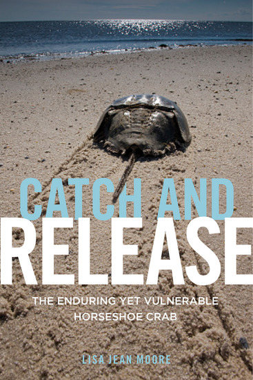 Catch and Release - The Enduring Yet Vulnerable Horseshoe Crab - cover